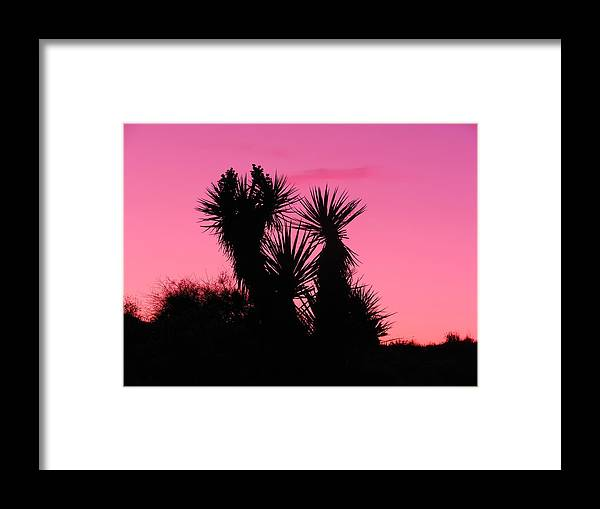Landscape Framed Print featuring the photograph Desert Pink by James Welch
