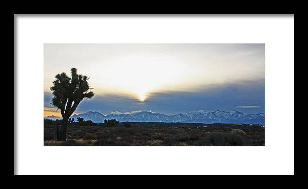 Landscape Framed Print featuring the photograph Desert Winter View by Chet King