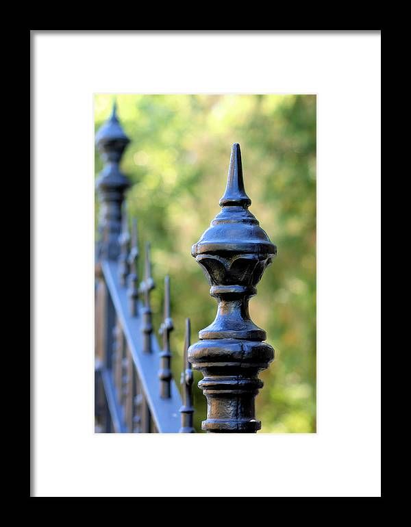 Fence Framed Print featuring the photograph Details by Rosemary Bliss