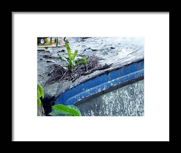 Blue Truck Framed Print featuring the photograph Determination by Mimi Saint DAgneaux