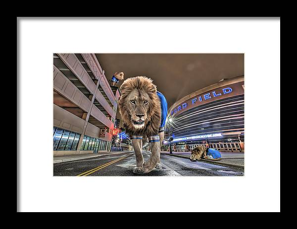 Comerica Park Framed Print featuring the photograph Detroit Lions at Ford Field by Nicholas Grunas