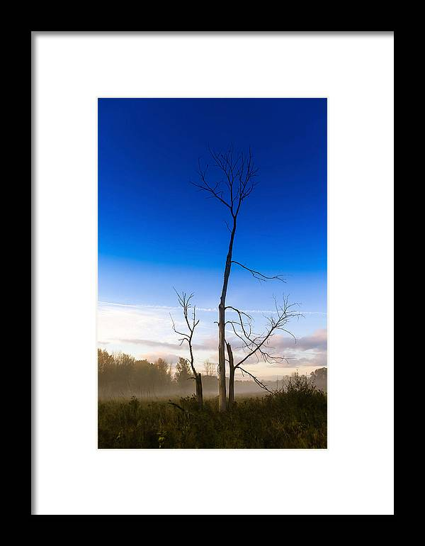 Fog Framed Print featuring the photograph Dig Out Your Soul by Freddie Bennett
