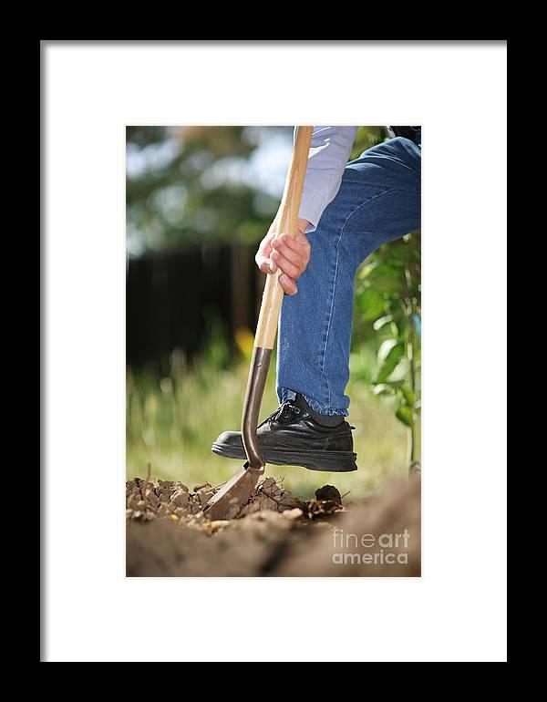 Shovel Framed Print featuring the photograph Digging Soil by Konstantin Sutyagin