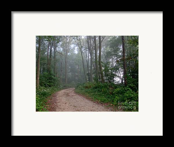 Path Framed Print featuring the photograph Dirt Path In Forest Woods With Mist by Olivier Le Queinec