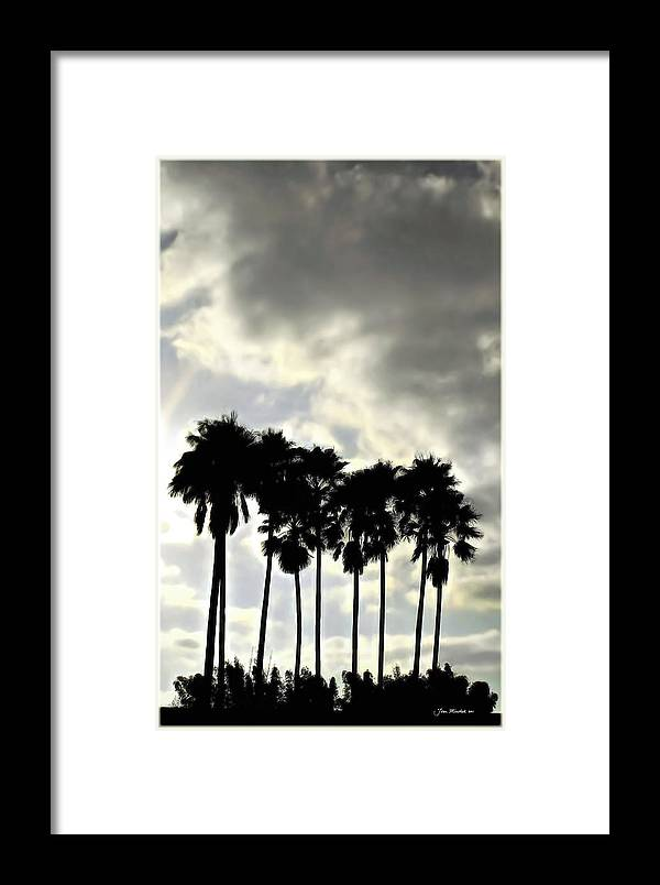 Palm Shadows Framed Print featuring the digital art Disney's Epcot Palm Trees by Joan Minchak