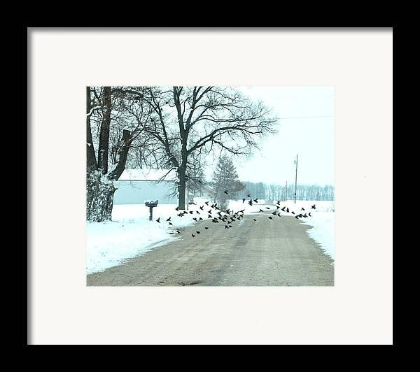 Indiana Winters Framed Print featuring the photograph Disturbing The Flock by Julie Dant