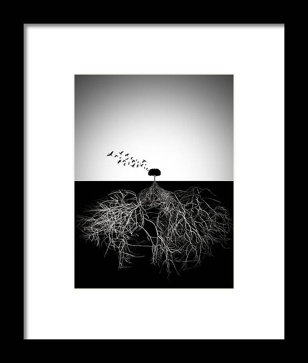 Roots Framed Print featuring the photograph Do Not Judge According To Appearance by Sourig Arslanian