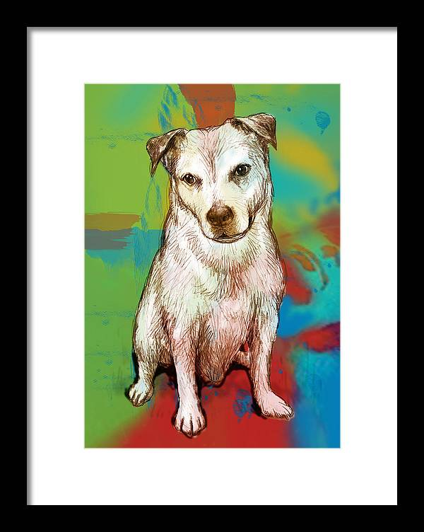Dog Stylised Pop Morden Art Drawing Sketch Portrait. Pet Framed Print featuring the drawing Dog Stylised Pop Modern Art Drawing Sketch Portrait by Kim Wang