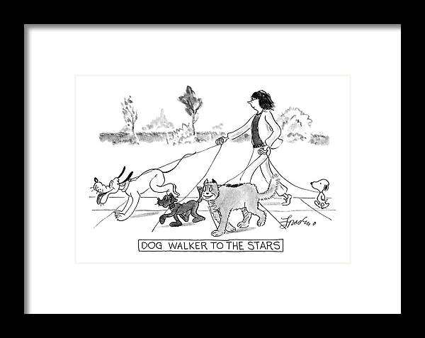 Pets Framed Print featuring the drawing Dog Walker To The Stars by Edward Frascino