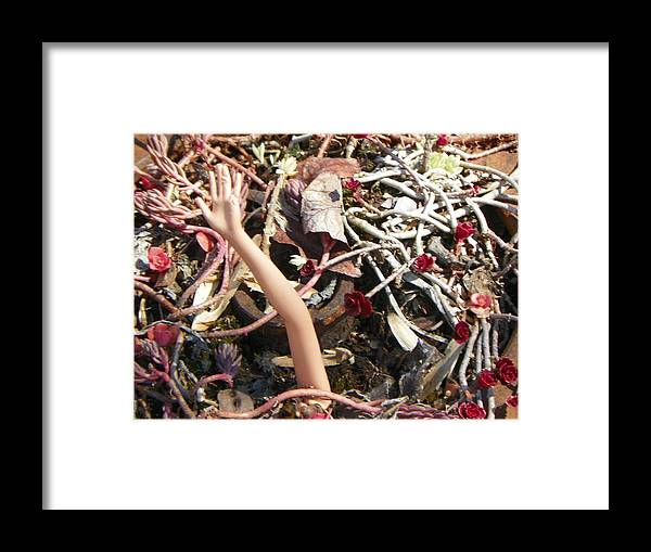 Doll Framed Print featuring the photograph Doll Hand Reaching by Bernie Smolnik