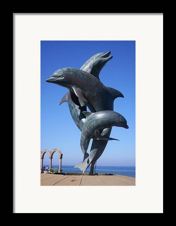 Jandrel Framed Print featuring the photograph Dolphin Dance by J Andrel