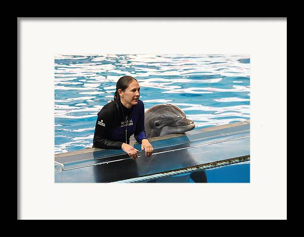 Inner Framed Print featuring the photograph Dolphin Show - National Aquarium In Baltimore Md - 1212230 by DC Photographer