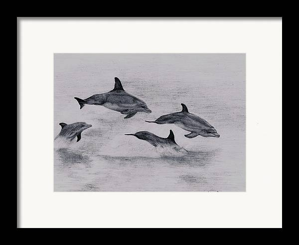 Dolphin Framed Print featuring the drawing Dolphins by Lucy D