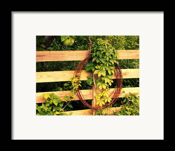 Fence Framed Print featuring the photograph Don't Fence Me In by Cricket Hackmann