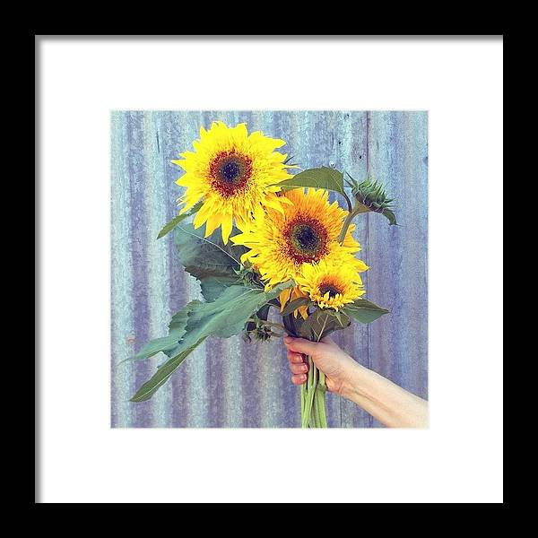 Summer Framed Print featuring the photograph Don't You Just Love Summertime? by Blenda Studio