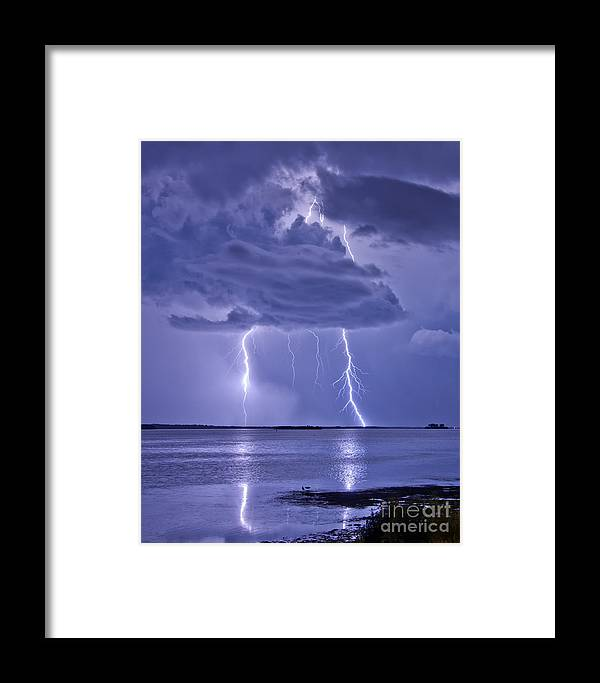 Florida Framed Print featuring the photograph Double Reflection by Stephen Whalen