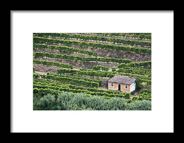Douro Framed Print featuring the photograph Douro Valley Vineyards by Eggers Photography