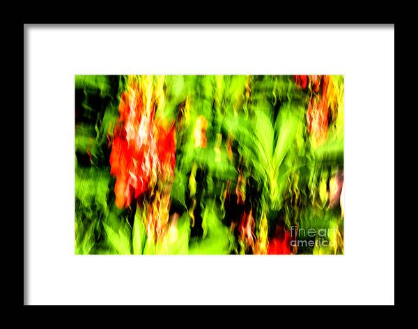 Blurred Motion Framed Print featuring the photograph Dream Garden - 252 by Paul W Faust - Impressions of Light