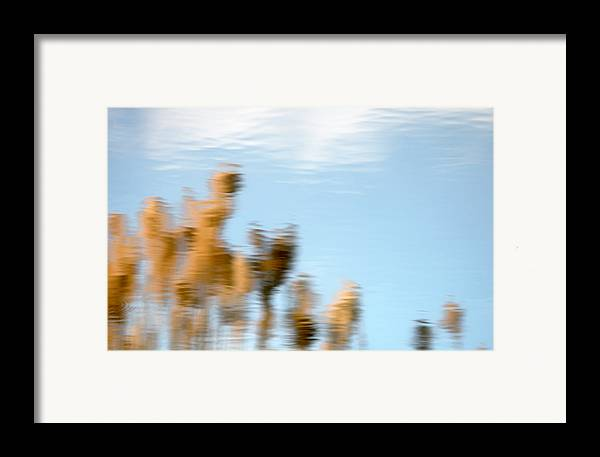 Nature Framed Print featuring the photograph Dream World by Steven Milner
