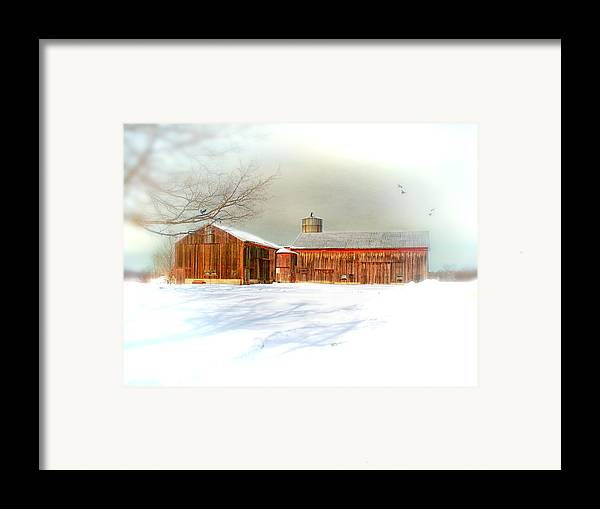 Dreamy Framed Print featuring the photograph Dreams Of A White Christmas by Mary Timman