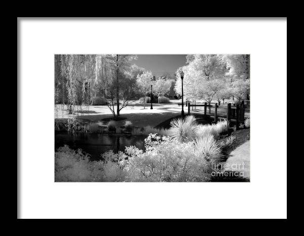Infrared Framed Print featuring the photograph Surreal Infrared Black White Infrared Nature Landscape - Infrared Photography by Kathy Fornal