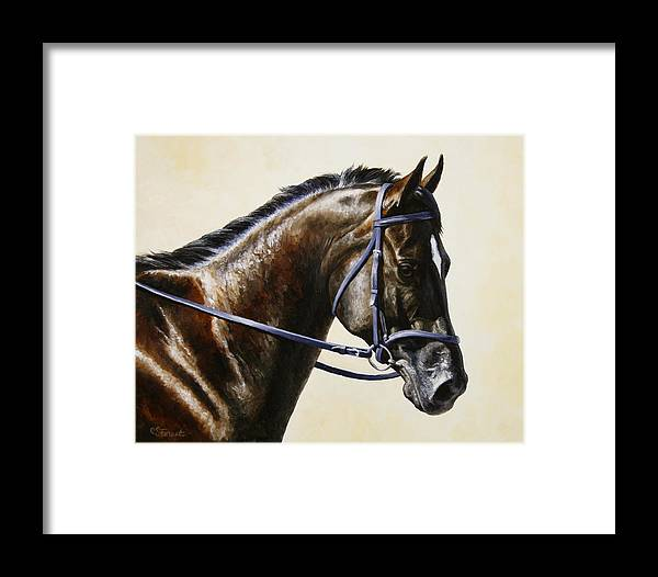 Horse Framed Print featuring the painting Dressage Horse - Concentration by Crista Forest