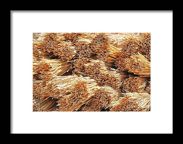 Yellow Grass Framed Print featuring the photograph Dried Grass by Herman Cloete