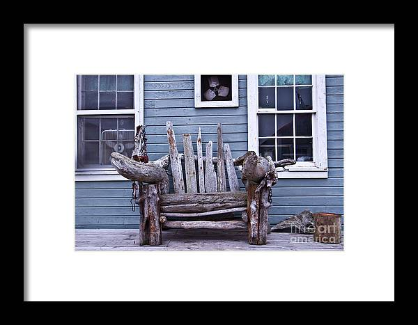 Photography Framed Print featuring the photograph Driftwood Bench by Terry Cotton