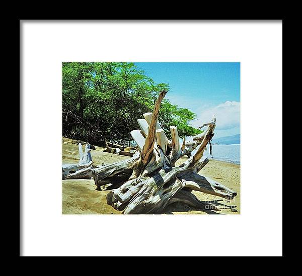 Art From Maui Hawaii Outdoors Driftwood Natural Sculpture Beach Scene Anthropomorphic Stock Shot Trees Serene Marvels Of Nature Travel Canvas Print Poster Print Metal Frame Available On Greeting Cards T Shirts Shower Curtains Throw Pillows Phone Cases Duvet Covers Mugs And Pouches Framed Print featuring the photograph Driftwood On A Maui Beach by Marcus Dagan