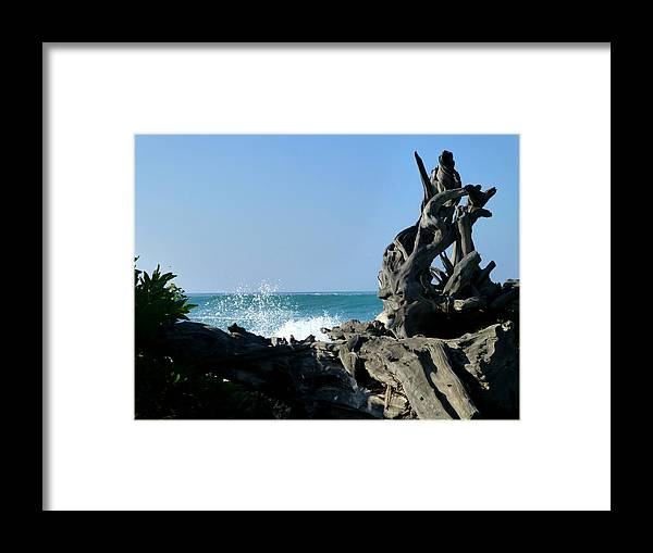 Driftwood Framed Print featuring the photograph Driftwood Tower by Lori Seaman