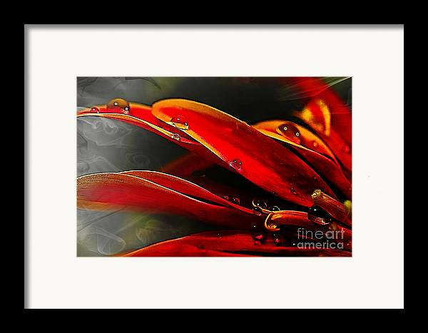 Red Framed Print featuring the digital art Drop Dead Red by Wobblymol Davis