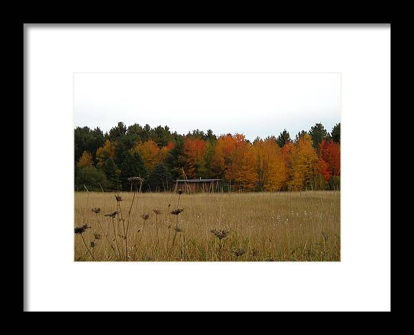 Fall Leaves Framed Print featuring the photograph Dry Bouquets by Ishana Ingerman