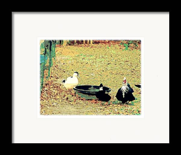 Ducks Framed Print featuring the mixed media Ducky Afternoon by YoMamaBird Rhonda