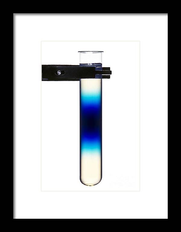 Methylene Blue Framed Print featuring the photograph Dye Diffusion In Agar by Martyn F. Chillmaid