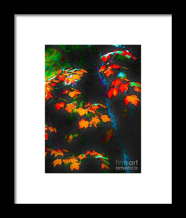 Landscape Framed Print featuring the photograph Early Autum by Fred L Gardner