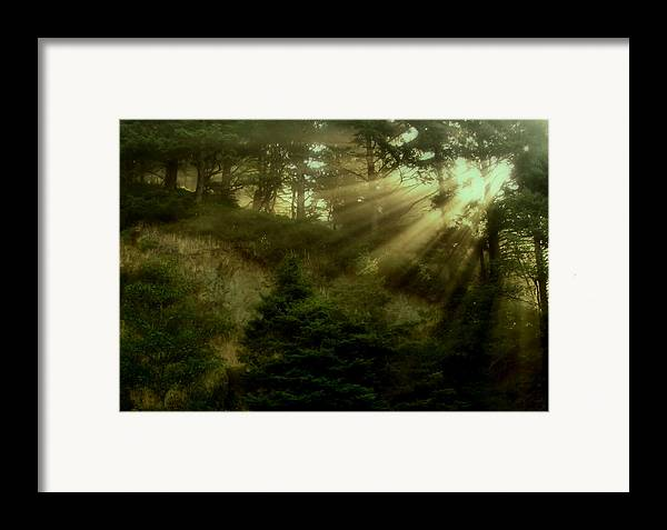 Sunrise Framed Print featuring the photograph Early Morning by Katie Wing Vigil