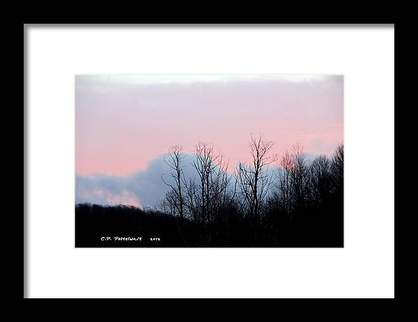 Sky Framed Print featuring the photograph Early Morning Sky and Trees by Carolyn Postelwait