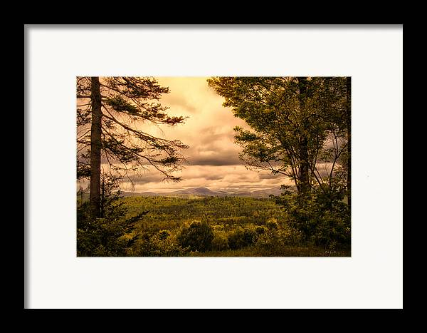 Appalachian Trail Framed Print featuring the photograph Early Spring Rain by Bob Orsillo
