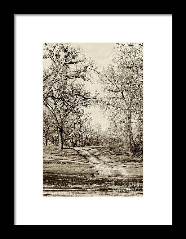 Vertical Framed Print featuring the photograph Early Winter by Gary Richards