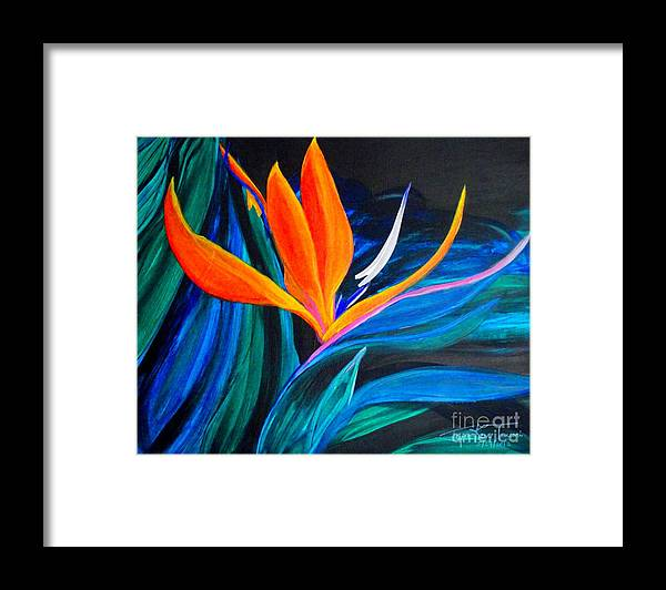 Bird Of Paradise Canvas Print Framed Print featuring the painting Eastcoast Bird Of Paradise by Jayne Kerr