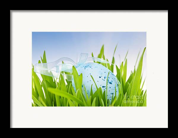 Easter Framed Print featuring the photograph Easter Egg In Grass by Elena Elisseeva