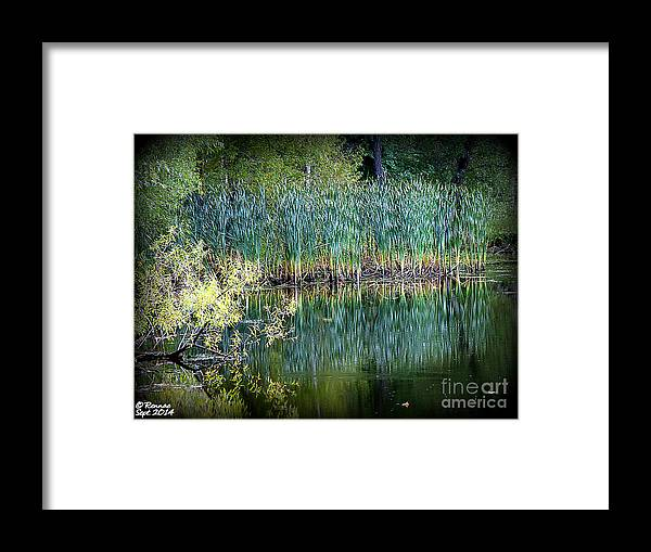 Landscape Framed Print featuring the photograph Edge Of Reflections by Rennae Christman