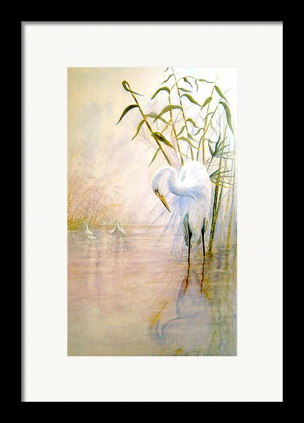 Eret; Bird; Low Country Framed Print featuring the painting Egret by Ben Kiger