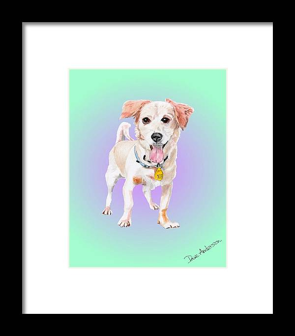 Dog Framed Print featuring the drawing Ehu - A Former Shelter Sweetie by Dave Anderson