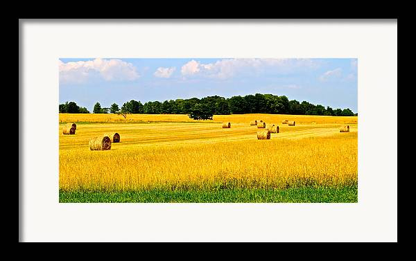 Farm Framed Print featuring the photograph Eldorado by Frozen in Time Fine Art Photography