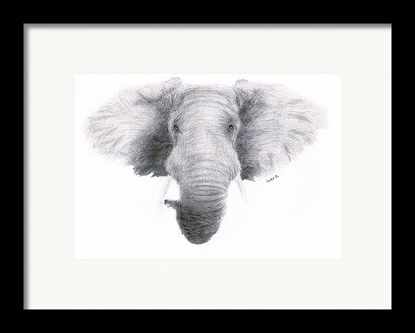 Elephant Framed Print featuring the drawing Elephant by Lucy D