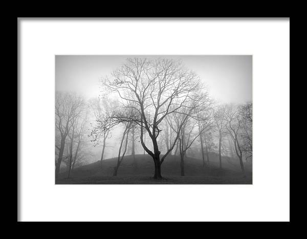 Nature Framed Print featuring the photograph Empty by Diana Angstadt
