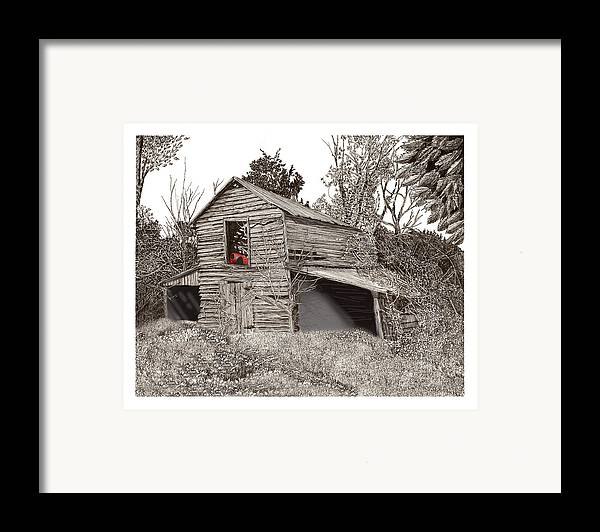 Selective Coloring Art Framed Print featuring the drawing Empty Old Barn by Jack Pumphrey