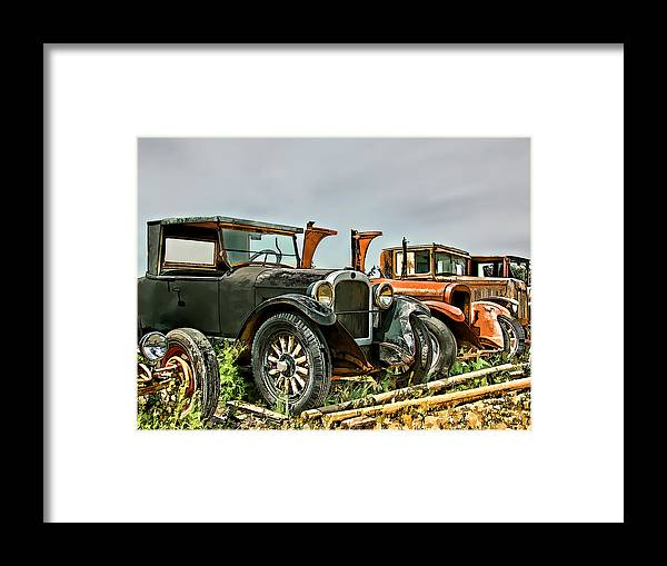 Dan Sabin Framed Print featuring the photograph End Of The Year Clearance by Dan Sabin