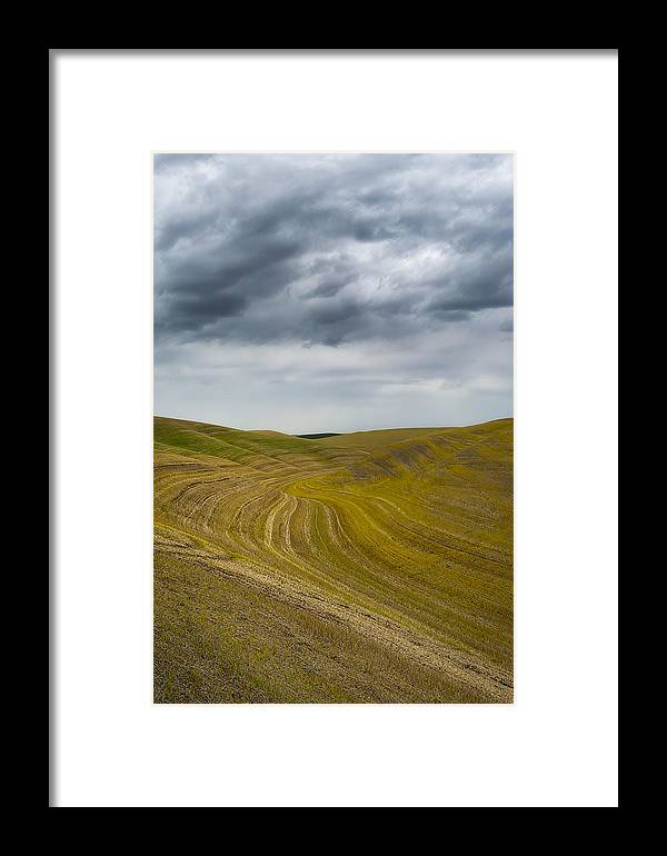 Palouse Framed Print featuring the photograph Endless In Color by Ryan Manuel